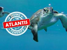 Diving instructors needed at Diving Atlantis